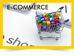 E Commerce Website with Payment Gateway Providers